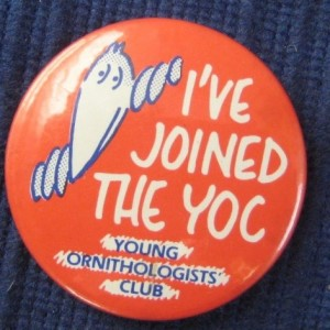 Young-Ornithologists-Club-Badge